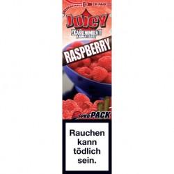 Juicy Blunt Rasperry