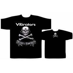 The Vibrators troops